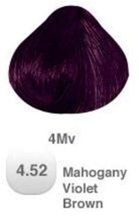 Essay on my favourite colour purple hair